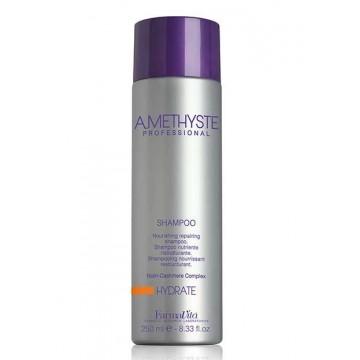 Shampoing Amethyste Hydrate (250ml) - FVITA
